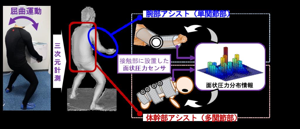 面接触を直接考慮したアシスト機構のイメージ